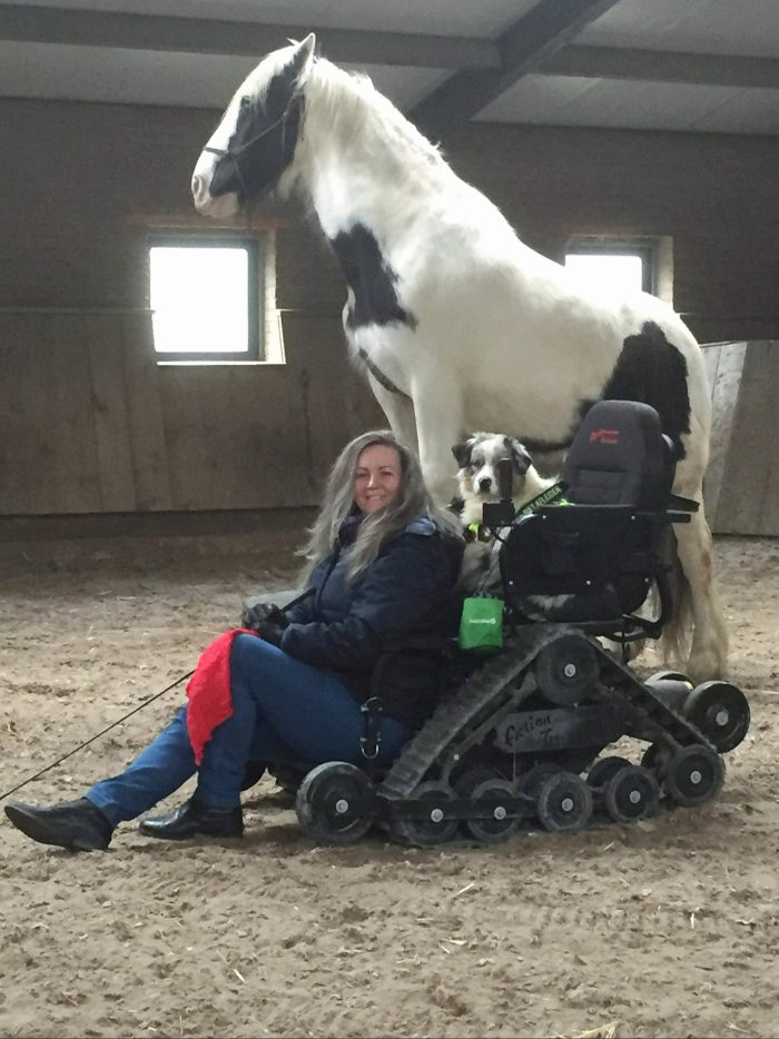 Barbara sits in front of her wheelchair, with a dog sat in her wheelchair, and a horse stood on a block behind her